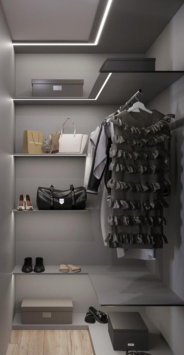 Прихожая видовой кадр устройства корпусной гардеробной